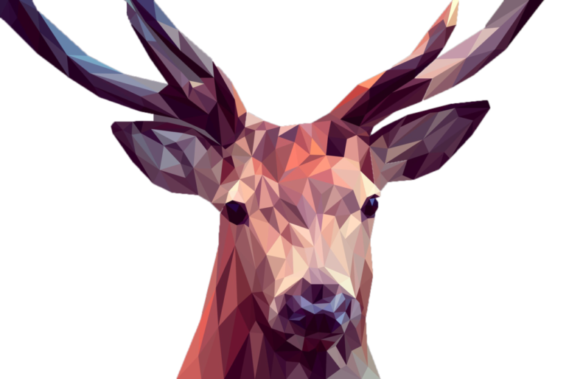 deer-3275594_1920